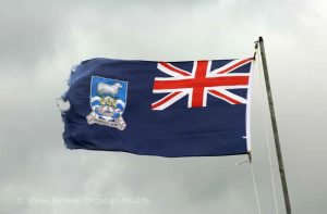 The Falkland Islands Flag complete with sheep.